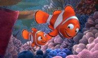 Finding-Nemo school